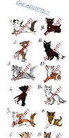 Cat Adoptables CLOSED by MoonEVENING