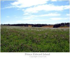 Prince Edward Island by Aoxa-Cats