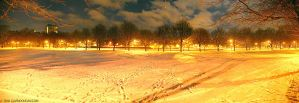 Meadows Winter Panorama by gdphotography
