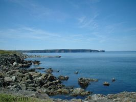 Bell Island NFLD by Cricketee