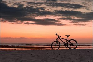 Indonesian evening landscape with a bike by YuppiDu