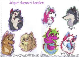 Adopted character's headshots by lfraysse