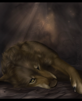 The Young Wolf. by Eredhys