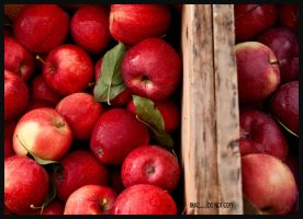 Crate of Apples by RM42