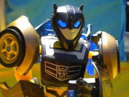 Elite Guard Bumblebee 1 by xenacee