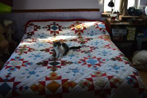 Jazzy Christmas Quilt by Serenitys-garden
