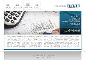 Accounting services website by eEl886