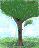 That childhood tree.. Coloured by everybodyin