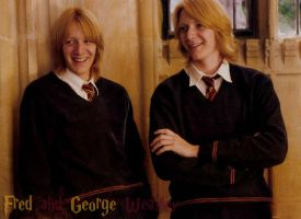 Fred and George Weasley by StereoCatastrophe
