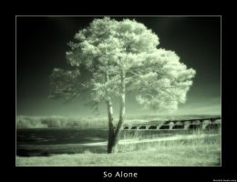 So Alone by livingindarkness
