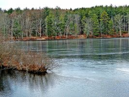 Laurel Lake In Winter 03 by TemariAtaje