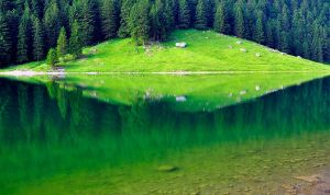Seealpsee Symmetry by alban-expressed