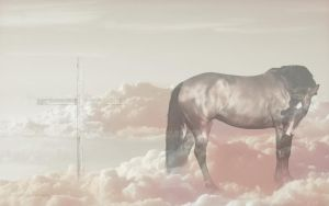 the humbled king by takeoffyourcolors