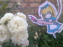 Alice In Human Realm by ZarekLittlePrince