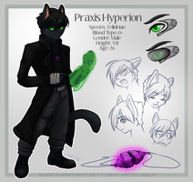 Praxis: Reference Sheet by Arctic-Sekai