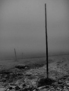 Fog 4 - Poles by ClockworkTree