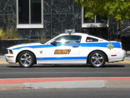 BCSO Mustang GT by wastemanagementdude
