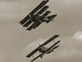 First World War Dogfight by davepphotographer
