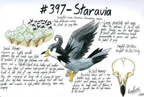 Staravia- Investigation by Oh-Ninja-Please