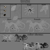 .:own species:. Aneochus by FuriDeamon