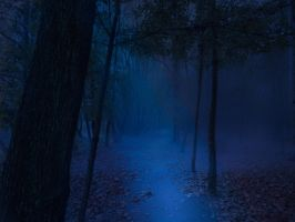 Path in the forest ( night) Premade by Simbores