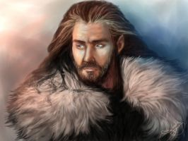 Thorin by Paradiss2009