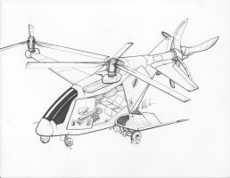 Commissioned Perseus Autogyro by Jepray