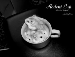 A Rodent Cup by hobstad