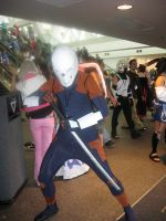 Grey Fox by AngstyGuy