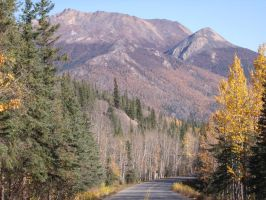 Denali Park Highway by Speck2