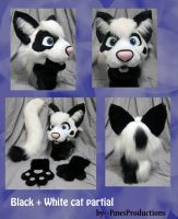 Black an white cat partial by PlushiePaws