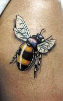 tattoo bee by alan barbosa by tattooloko