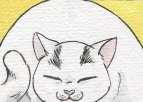 Yuki the fat white cat by AmberStoneArt