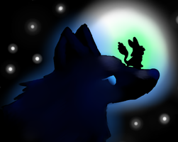 A wolf and his master by SolarFoxi