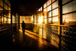 Golden Hour at the Station by Sudlice