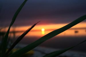 sunset 5 by jayPel