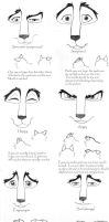 How to Do Wolf Expressions by wolfsilvermoon