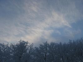 winter sky by Artemisfire