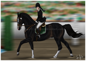 Flowing Canter by Jullelin