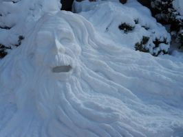 Old Man Winter 2014 by SylvanSmith