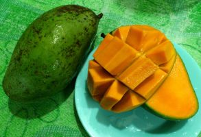 Tongdam emas hitam mango by plainordinary1