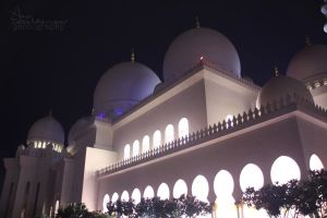 Sheikh Zayed mosque Abu Dhabi 3 by amirajuli