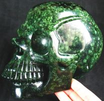 Green Coral Stone Skull 002d by SKULLKRAFT
