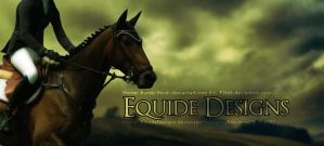 Another Horse Picture by EquideDesigns