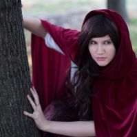 Once Upon A Time:Red Ridding Hood, The Wolf Within by SabinaRose5