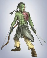 Pathfinder Half-orc Monk by facelesscow
