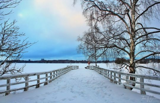 Snowy Jetty by Pajunen