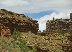 Daddy Canyon II by Synaptica
