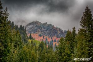 Light Snow and Colors HDR by mjohanson