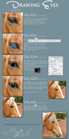 Drawing Eye Tutorial by HLRynlar